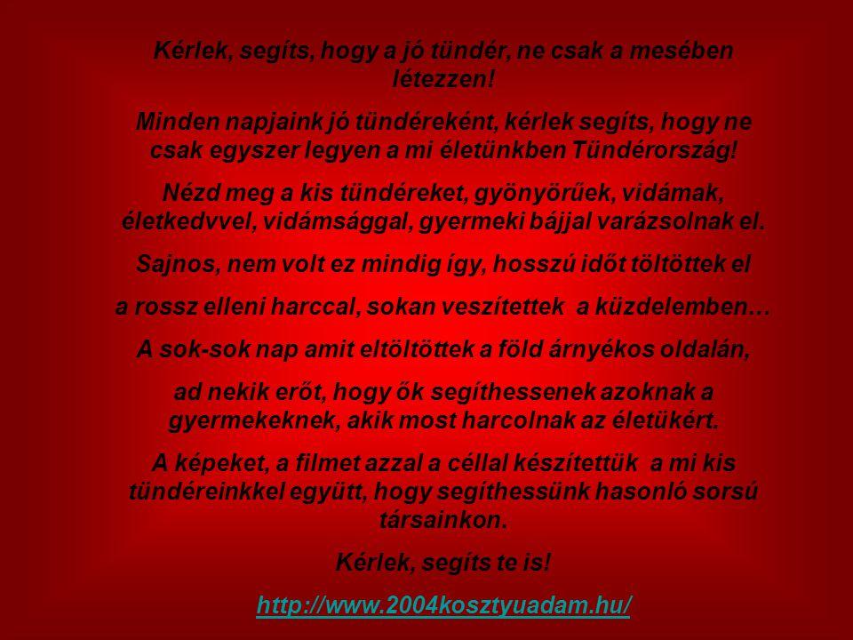 Honlapunkon tájékozódhatsz munkánkról, céljainkról: http://www.2004kosztyuadam.hu/
