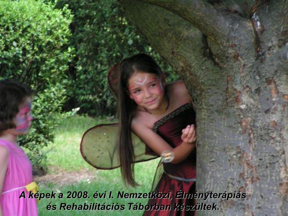 A képek a 2008. évi I. Nemzetközi, Élményterápiás és Rehabilitációs Táborban készültek.