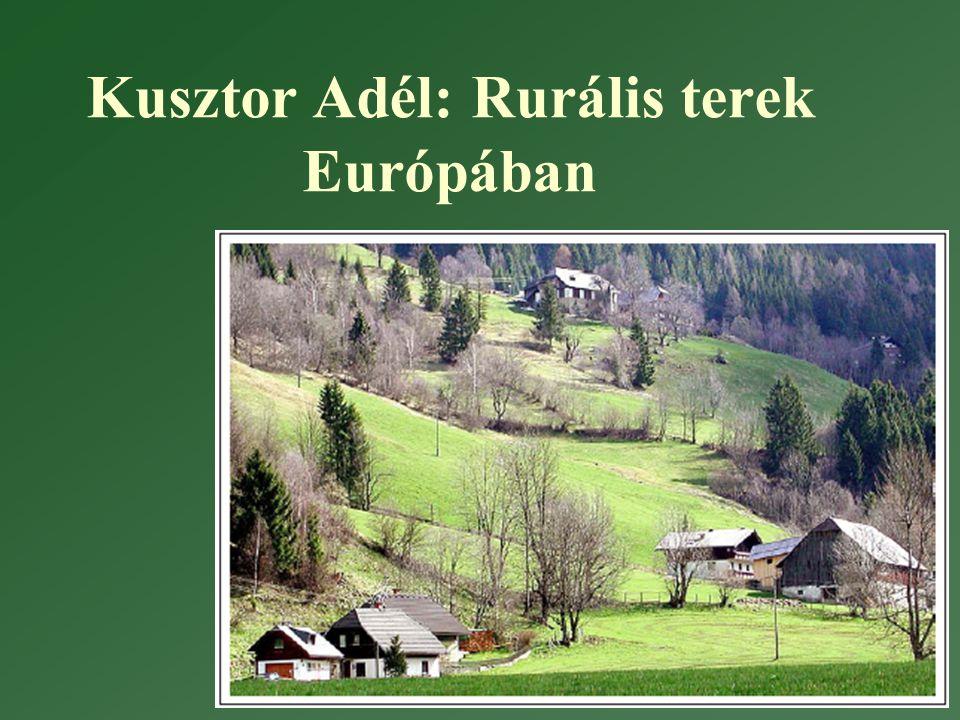 Vidék kritériumai (Magyarországon) •A vidék fogalmának meghatározására 5 feltétel: •Az aktív keresőknek legalább 20%-a a mezőgazdaságban dolgozott 1990-ben.
