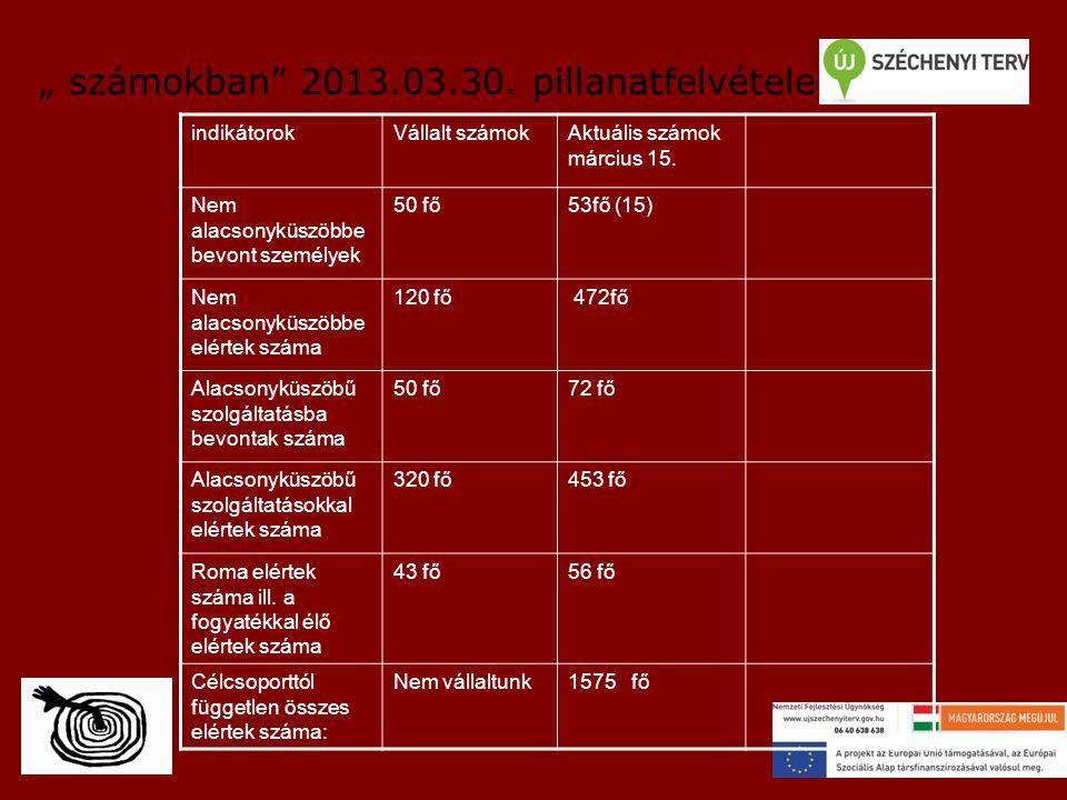 """"""" számokban 2013.03.30.pillanatfelvétele indikátorokVállalt számokAktuális számok március 15."""