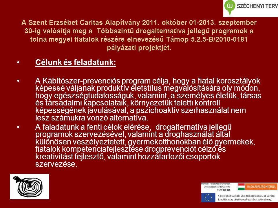 A Szent Erzsébet Caritas Alapítvány 2011.október 01-2013.