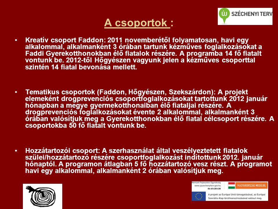 A csoportok : •Kreatív csoport Faddon: 2011 novemberétől folyamatosan, havi egy alkalommal, alkalmanként 3 órában tartunk kézműves foglalkozásokat a Faddi Gyerekotthonokban élő fiatalok részére.