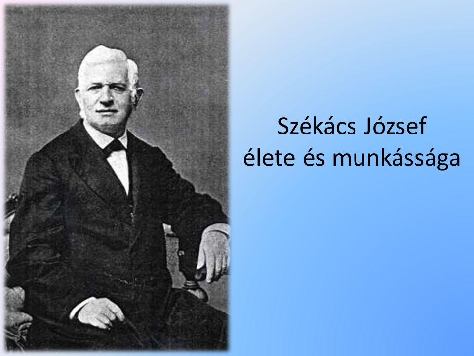 Élete • Székács József édesapja sok gyermeket nevelő kézműves volt.