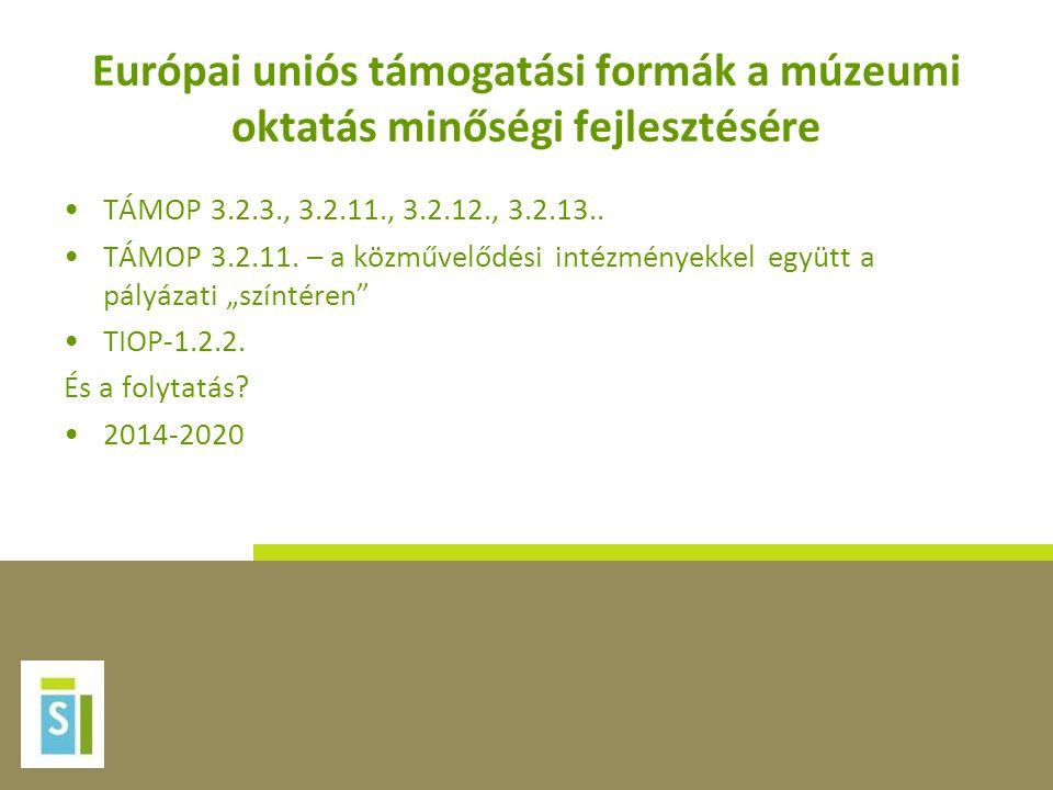 Európai uniós támogatási formák a múzeumi oktatás minőségi fejlesztésére •TÁMOP 3.2.3., 3.2.11., 3.2.12., 3.2.13.. •TÁMOP 3.2.11. – a közművelődési in