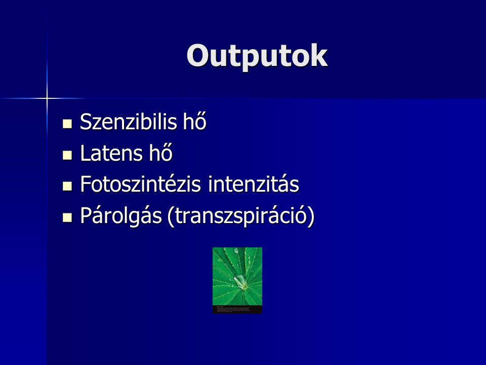 Outputok  Szenzibilis hő  Latens hő  Fotoszintézis intenzitás  Párolgás (transzspiráció)