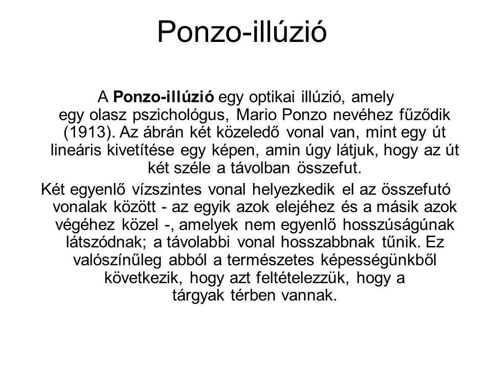 Ponzo-illúzió A Ponzo-illúzió egy optikai illúzió, amely egy olasz pszichológus, Mario Ponzo nevéhez fűződik (1913). Az ábrán két közeledő vonal van,