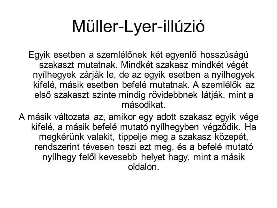 Müller-Lyer-illúzió Egyik esetben a szemlélőnek két egyenlő hosszúságú szakaszt mutatnak. Mindkét szakasz mindkét végét nyílhegyek zárják le, de az eg