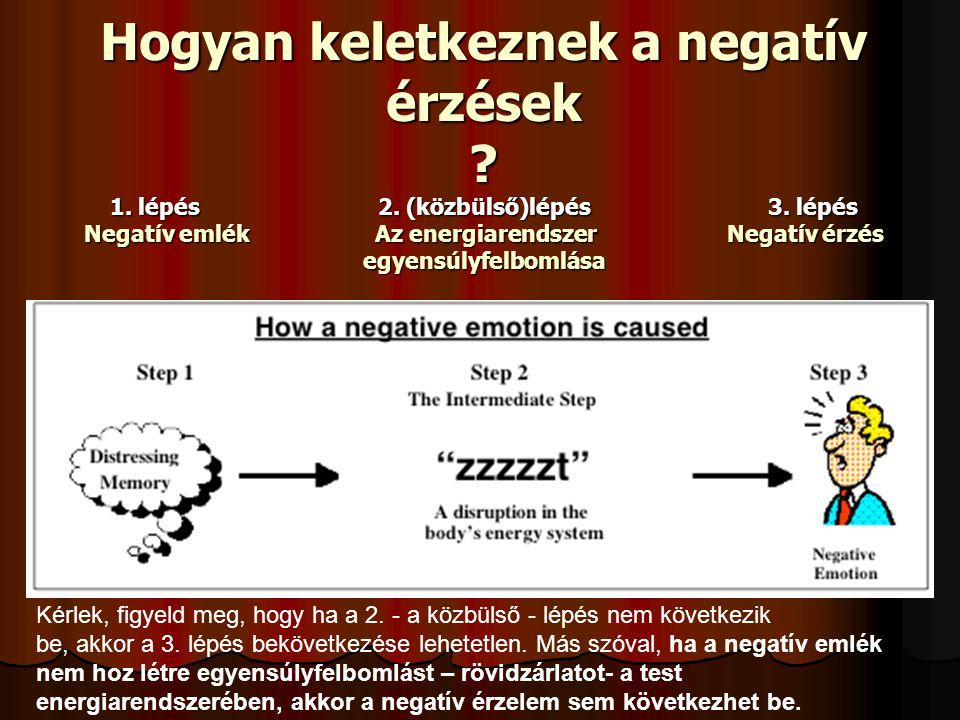 Hogyan keletkeznek a negatív érzések ? 1. lépés 2. (közbülső)lépés 3. lépés Negatív emlék Az energiarendszer Negatív érzés egyensúlyfelbomlása Kérlek,