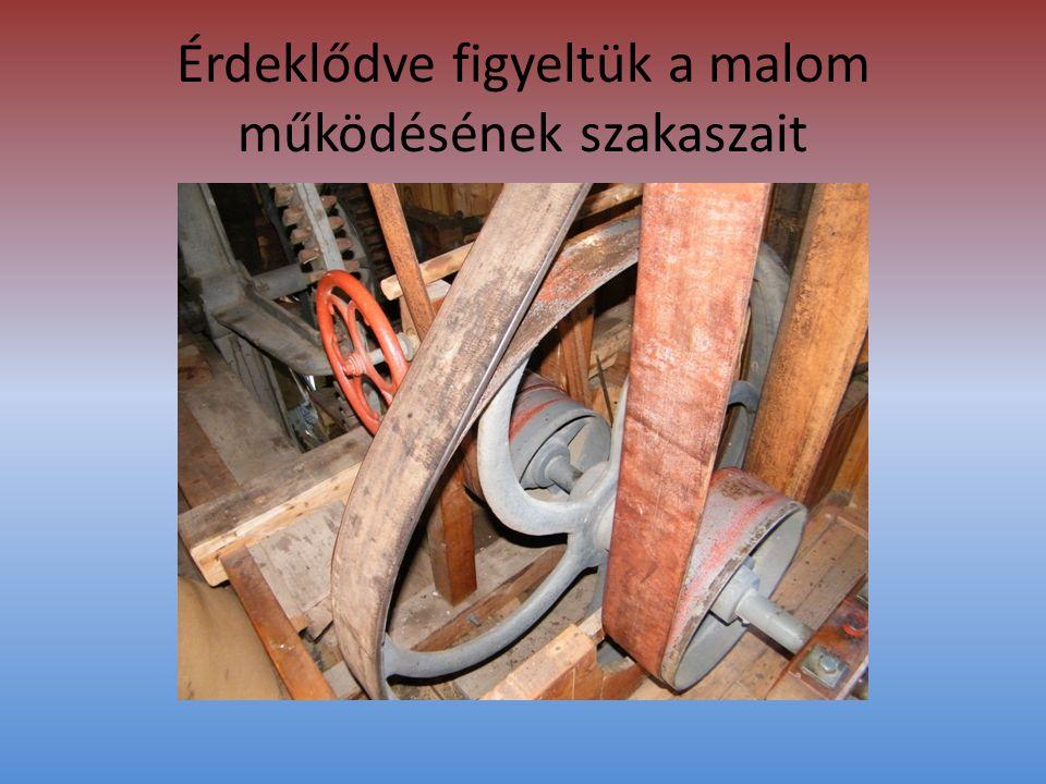 Érdeklődve figyeltük a malom működésének szakaszait