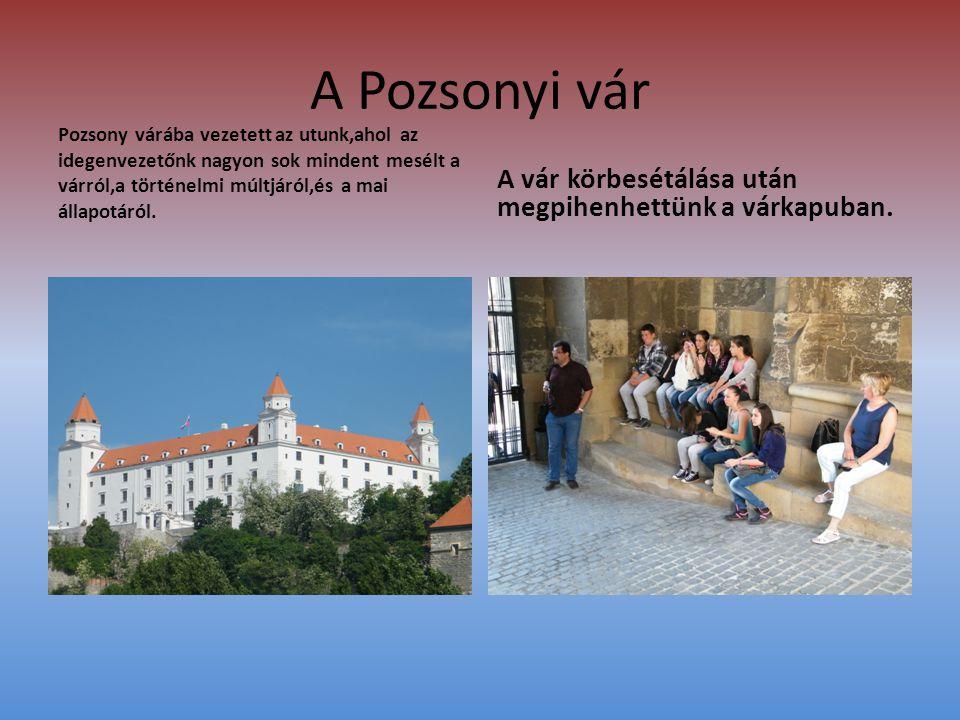 A Pozsonyi vár Pozsony várába vezetett az utunk,ahol az idegenvezetőnk nagyon sok mindent mesélt a várról,a történelmi múltjáról,és a mai állapotáról.