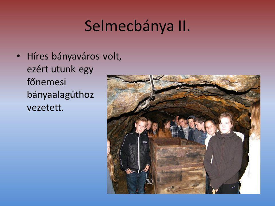 Selmecbánya II. • Híres bányaváros volt, ezért utunk egy főnemesi bányaalagúthoz vezetett.