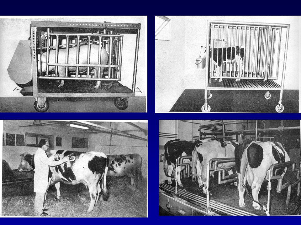 Az emészthetőséget befolyásoló tényezők: a.az állattal kapcsolatos tényezők: állatfaj (eltérő emésztési sajátosságok) fajta (nem számottevő a fajták közötti különbség, az egyedi eltérések gyakran nagyobbak) az állat kora (fiatal állatok emésztőképessége gyengébb az elégtelen enzimtermelés miatt) megszokás (főleg a kérődzőknél befolyásolja az emészthetőséget a takarmányváltás) évszak (nem számottevő a hatása, bár télen valamelyest csökkenhet az emészthetőség)