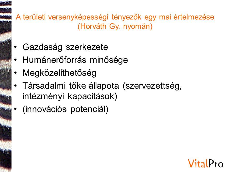 A területi versenyképességi tényezők egy mai értelmezése (Horváth Gy. nyomán) •Gazdaság szerkezete •Humánerőforrás minősége •Megközelíthetőség •Társad