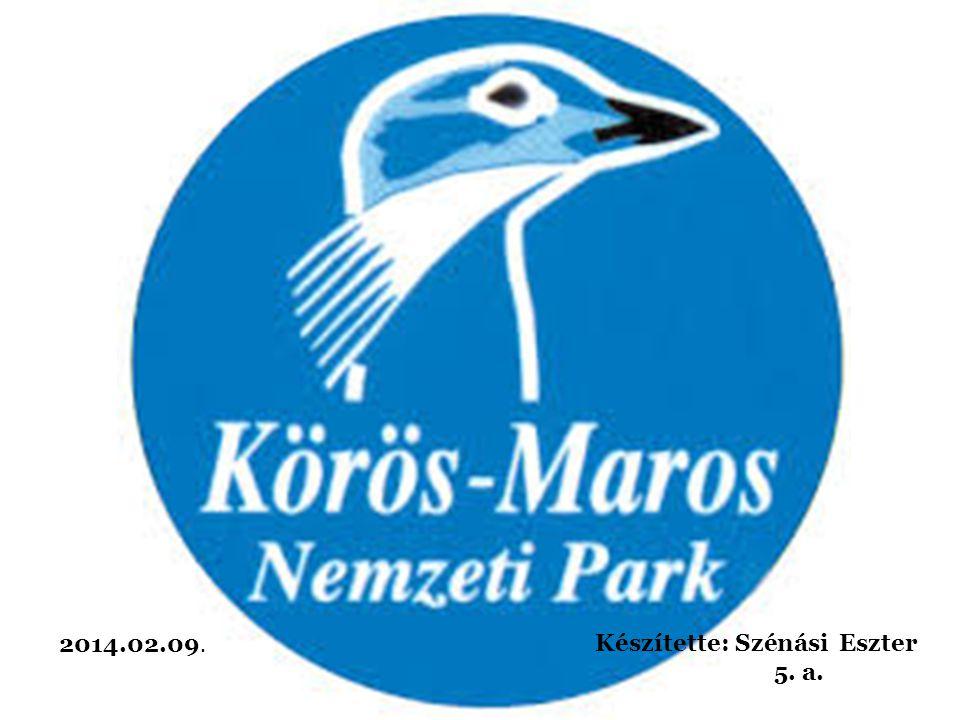 Tartalom - A Körös Maros Nemzeti Park (KMNP) elhelyezkedése - A Körös Maros Nemzeti Park részei - A Kis-Sárrét elhelyezkedése - Kerékpártúra útvonal a Kis-Sárréten - A Kisvátyoni tanösvény - Fontosabb védett értékek a Kis-Sárréten