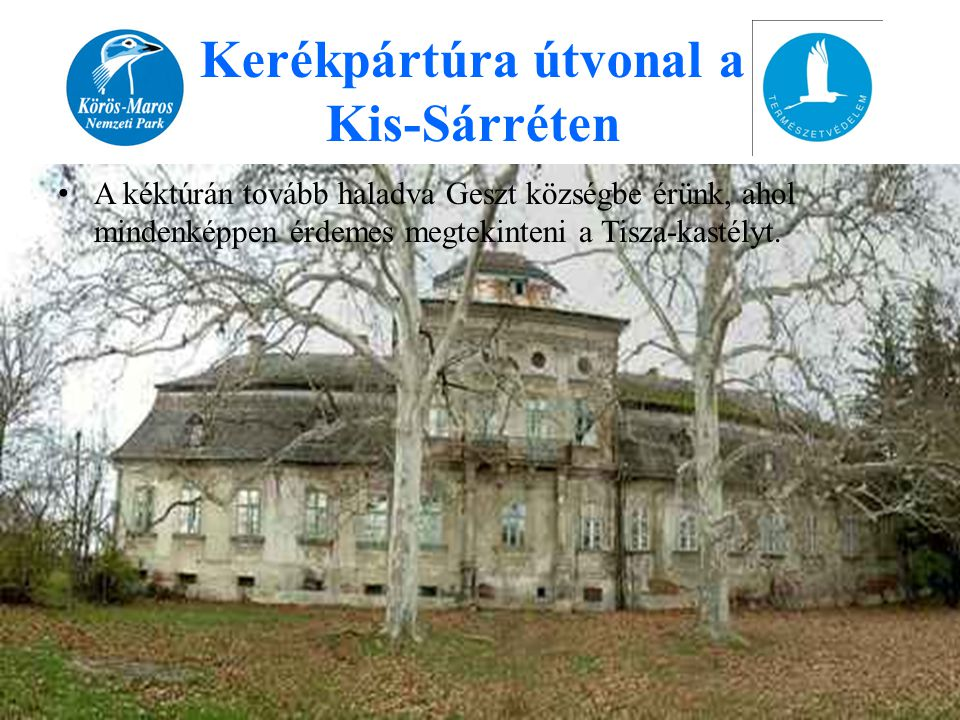 • A kéktúrán tovább haladva Geszt községbe érünk, ahol mindenképpen érdemes megtekinteni a Tisza-kastélyt. Kerékpártúra útvonal a Kis-Sárréten