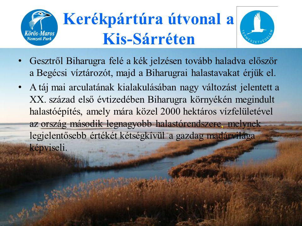 • Gesztről Biharugra felé a kék jelzésen tovább haladva először a Begécsi víztározót, majd a Biharugrai halastavakat érjük el. • A táj mai arculatának