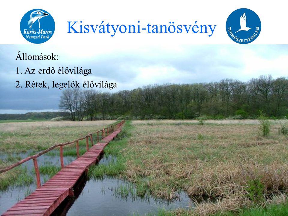Állomások: 1. Az erdő élővilága 2. Rétek, legelők élővilága Kisvátyoni-tanösvény