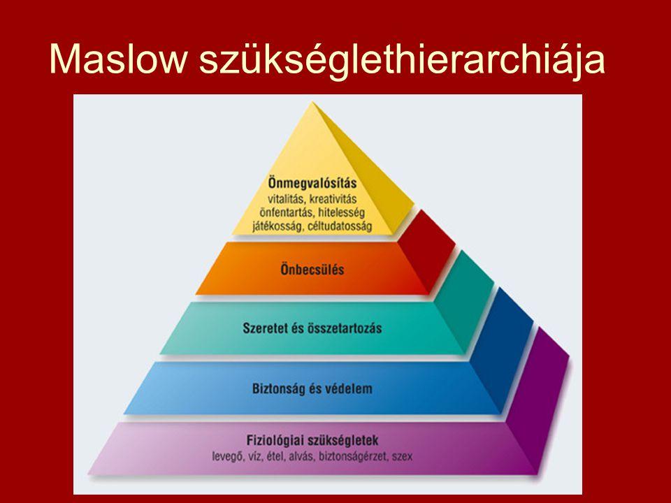 Fogyasztói társadalom egy olyan társadalom, ahol az egyre növekvő számú árucikkek és szolgáltatások birtoklása és használata az elsődleges kulturális törekvés, ez az egyéni boldogsághoz, társadalmi státuszhoz és nemzeti sikerességhez vezető legbiztosabb út. Paul Ekins -Szimbolikus fogyasztás: demonstratív, ugyanakkor manipulált - Tömegkultúra: általánossá válás, nivellálódás, standard életforma - A fogyasztás forradalmasítása: Olyan fogyasztási és vásárlási - szokások és lehetőségek, mint még soha: McWORLD: McDonald s, Burger King (gyorséttermek), bevásárlóközpontok, plázák, hitelkártyák, shopping network-ök világa Cél: szórakoztató bevásárlás ~ fogyasztási spirál fenntartása TRÜKK: Egyszerre RACIONÁLIS és HANGULATI-ÉRZELMI Miért van erre szükség.