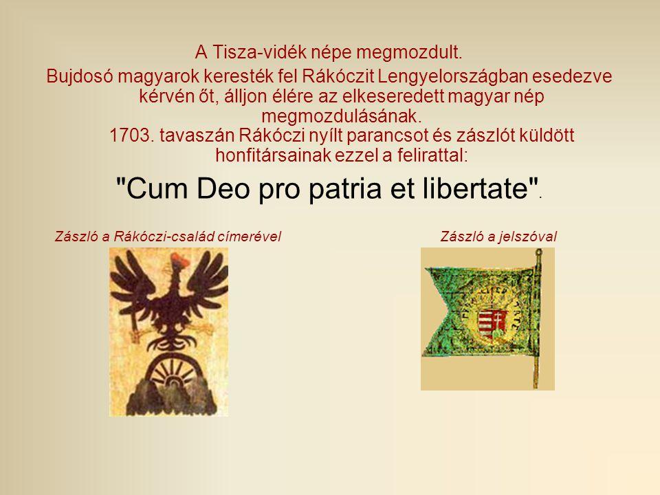 A Tisza-vidék népe megmozdult. Bujdosó magyarok keresték fel Rákóczit Lengyelországban esedezve kérvén őt, álljon élére az elkeseredett magyar nép meg