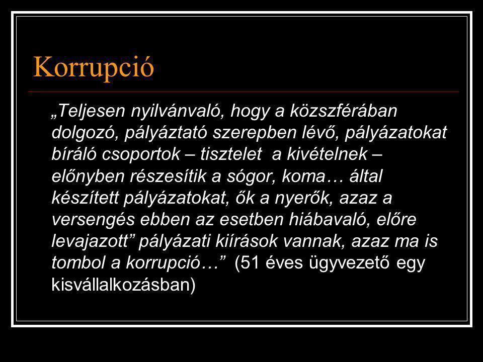 """Korrupció """"Teljesen nyilvánvaló, hogy a közszférában dolgozó, pályáztató szerepben lévő, pályázatokat bíráló csoportok – tisztelet a kivételnek – előn"""