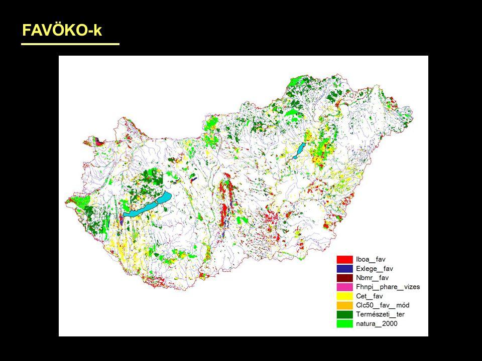 Felszín alatti vizektől függő ökoszisztémák vízigénye Vízfolyások: mederben hagyandó vízhozam a a halak számára szükséges vízmélység és sebesség alapján Sekély tavak : vízfelület párolása – csapadék (ezt a felszín alatti víz pótolja) Jelenleg, illetve cél: a terület %-ában Magas talajvízállású területek: a növényzet nyári túléléséhez szükséges vízmennyiség az erre alkalmas terület legalább felén
