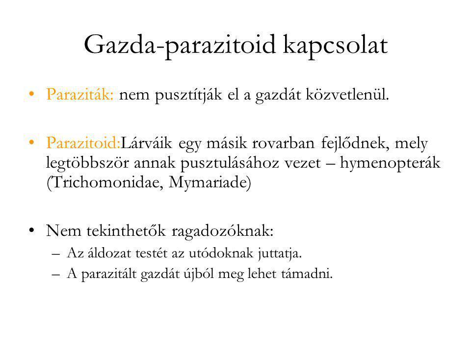 Gazda-parazitoid kapcsolat •Paraziták: nem pusztítják el a gazdát közvetlenül. •Parazitoid:Lárváik egy másik rovarban fejlődnek, mely legtöbbször anna