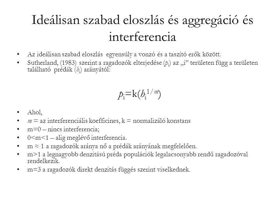 Ideálisan szabad eloszlás és aggregáció és interferencia •Az ideálisan szabad eloszlás egyensúly a vonzó és a taszító erők között. •Sutherland, (1983)