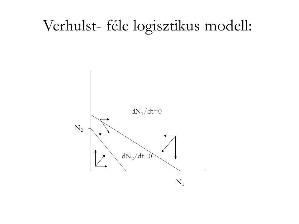 Verhulst- féle logisztikus modell: két faj zéró növekedési görbéje K1K1 K 2 /α 21 K2K2 K 1 /α 12 N1N1 N2N2 ● A két faj stabil együttélése