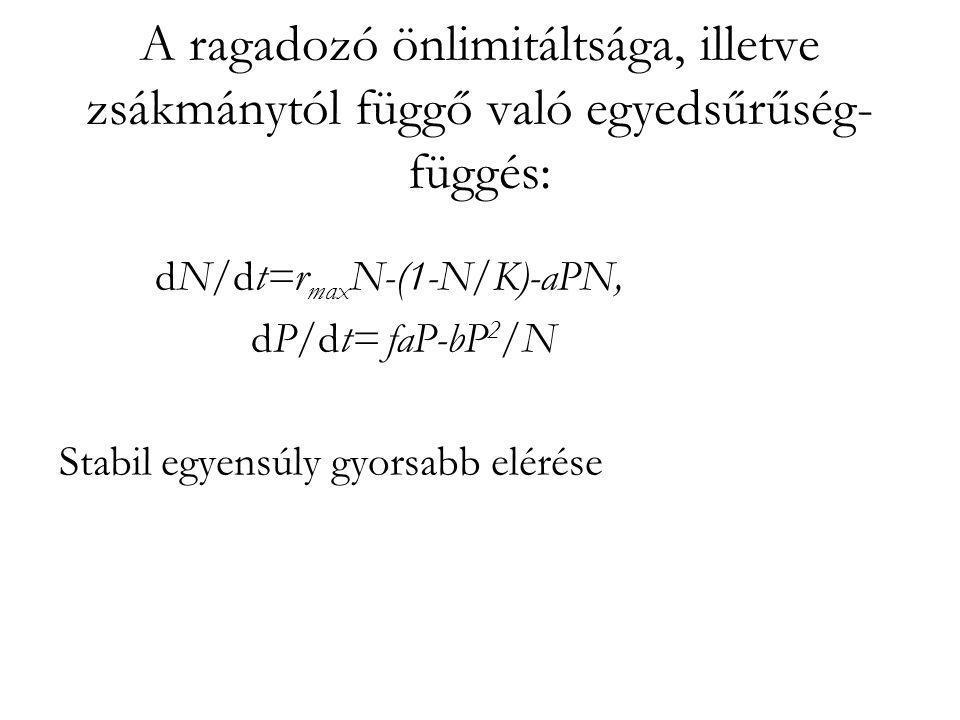 A ragadozó önlimitáltsága, illetve zsákmánytól függő való egyedsűrűség- függés: dN/dt=r max N-(1-N/K)-aPN, dP/dt= faP-bP 2 /N Stabil egyensúly gyorsab