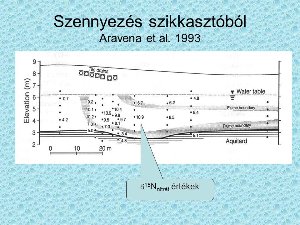 Szennyezés szikkasztóból Aravena et al. 1993  15 N nitrát értékek