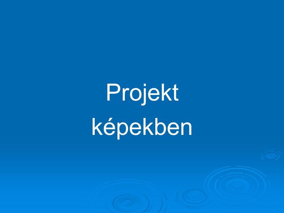 Projekt képekben