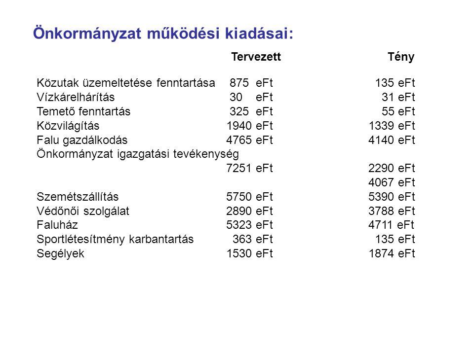 Önkormányzat működési kiadásai: TervezettTény Közutak üzemeltetése fenntartása 875 eFt 135 eFt Vízkárelhárítás 30 eFt 31 eFt Temető fenntartás 325 eFt