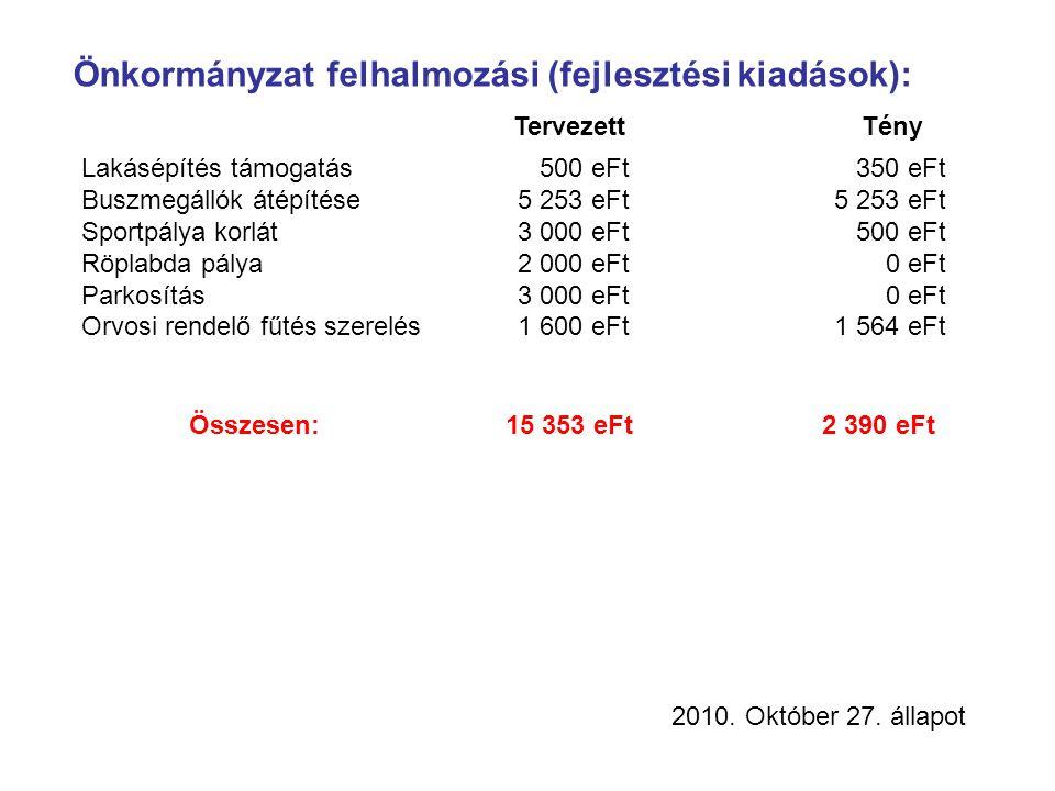 Önkormányzat felhalmozási (fejlesztési kiadások): TervezettTény Lakásépítés támogatás 500 eFt 350 eFt Buszmegállók átépítése 5 253 eFt 5 253 eFt Sportpálya korlát 3 000 eFt 500 eFt Röplabda pálya 2 000 eFt 0 eFt Parkosítás 3 000 eFt 0 eFt Orvosi rendelő fűtés szerelés 1 600 eFt 1 564 eFt Összesen:15 353 eFt2 390 eFt 2010.