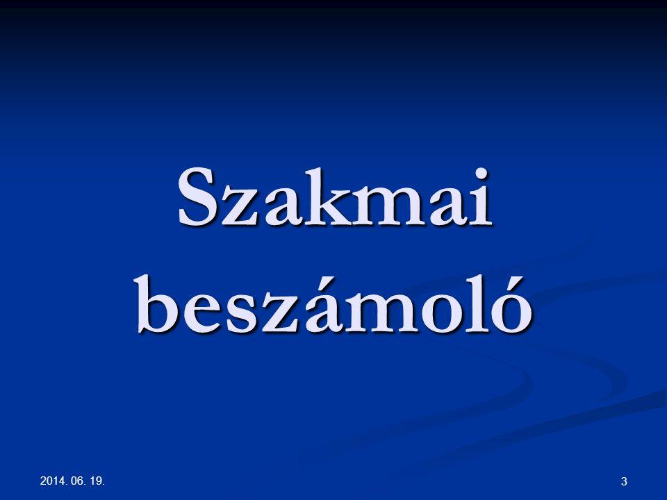 2014. 06. 19. 3 Szakmai beszámoló