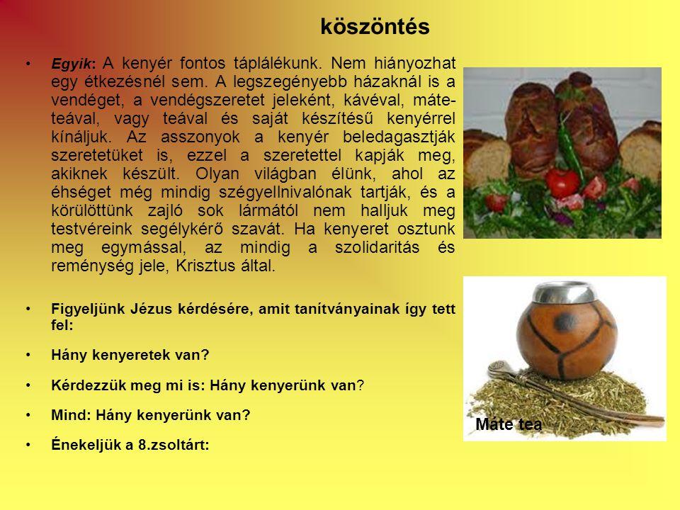 •Egyik: A kenyér fontos táplálékunk. Nem hiányozhat egy étkezésnél sem.