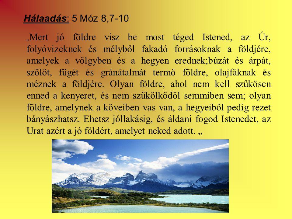 """Hálaadás: 5 Móz 8,7-10 """" Mert jó földre visz be most téged Istened, az Úr, folyóvizeknek és mélyből fakadó forrásoknak a földjére, amelyek a völgyben és a hegyen erednek;búzát és árpát, szőlőt, fügét és gránátalmát termő földre, olajfáknak és méznek a földjére."""