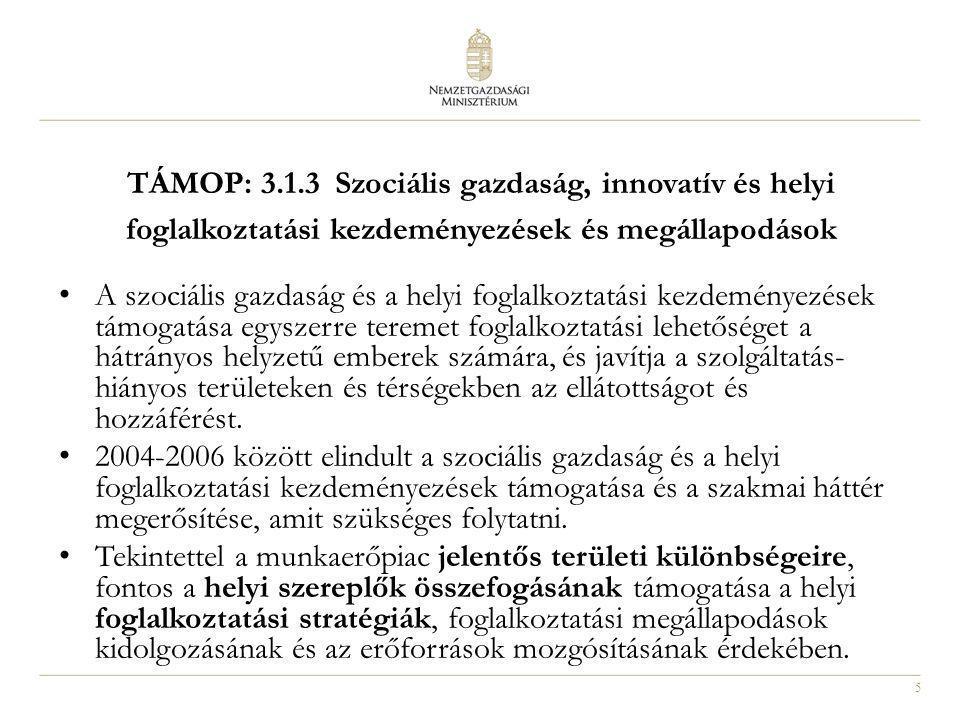 6 TÁMOP: 3.1.3 Szociális gazdaság, innovatív és helyi foglalkoztatási kezdeményezések és megállapodások A ROP (2004- 2006) keretében az Országos Foglalkoztatási Közalapítványhoz kapcsolódóan létrehozott hálózattal együttműködve fogjuk a támogatási konstrukciókat előkészíteni és lebonyolítani.