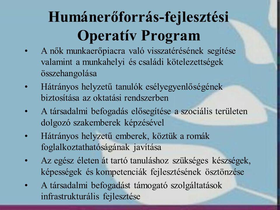 Humánerőforrás-fejlesztési Operatív Program •A nők munkaerőpiacra való visszatérésének segítése valamint a munkahelyi és családi kötelezettségek össze