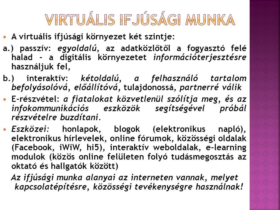  A virtuális ifjúsági környezet két szintje: a.) passzív: egyoldalú, az adatközlőtől a fogyasztó felé halad - a digitális környezetet információterjesztésre használjuk fel, b.) interaktív: kétoldalú, a felhasználó tartalom befolyásolóvá, előállítóvá, tulajdonossá, partnerré válik  E-részvétel: a fiatalokat közvetlenül szólítja meg, és az infokommunikációs eszközök segítségével próbál részvételre buzdítani.