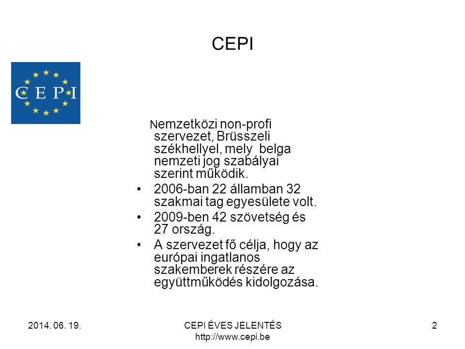 CEPI N emzetközi non-profi szervezet, Brüsszeli székhellyel, mely belga nemzeti jog szabályai szerint működik. •2006-ban 22 államban 32 szakmai tag eg