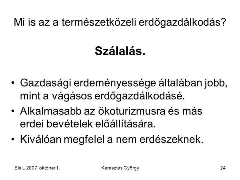 Elek, 2007. október 1.Keresztes György24 Szálalás.