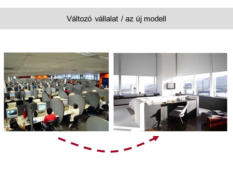 Változó vállalat / az új modell