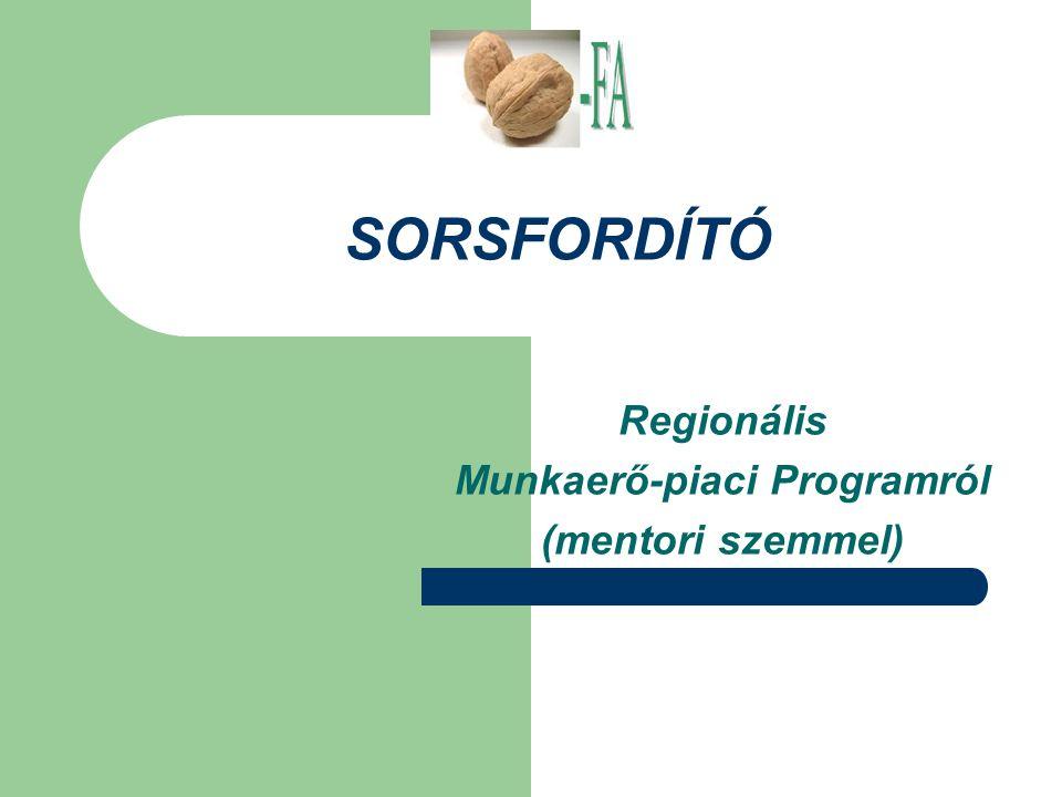 SORSFORDÍTÓ Regionális Munkaerő-piaci Programról (mentori szemmel)