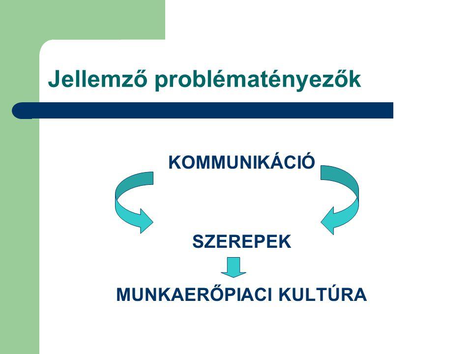 Jellemző problématényezők KOMMUNIKÁCIÓ SZEREPEK MUNKAERŐPIACI KULTÚRA