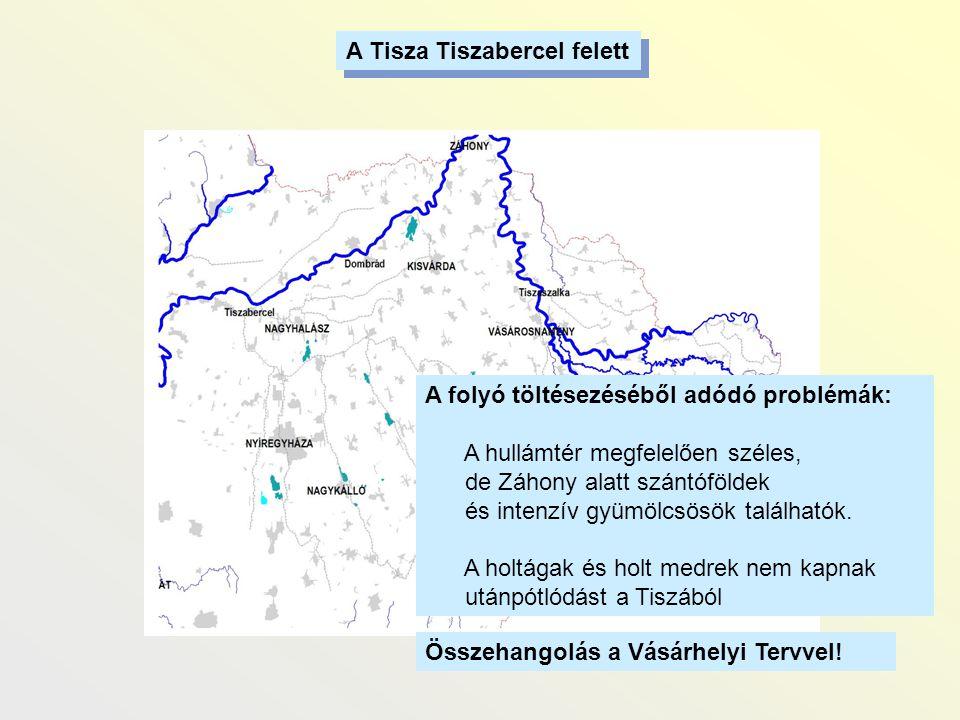 A Tisza Tiszabercel felett A folyó töltésezéséből adódó problémák: A hullámtér megfelelően széles, de Záhony alatt szántóföldek és intenzív gyümölcsös