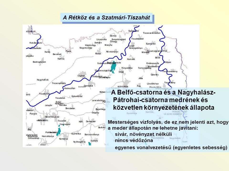 A Belfő-csatorna és a Nagyhalász- Pátrohai-csatorna medrének és közvetlen környezetének állapota Mesterséges vízfolyás, de ez nem jelenti azt, hogy a
