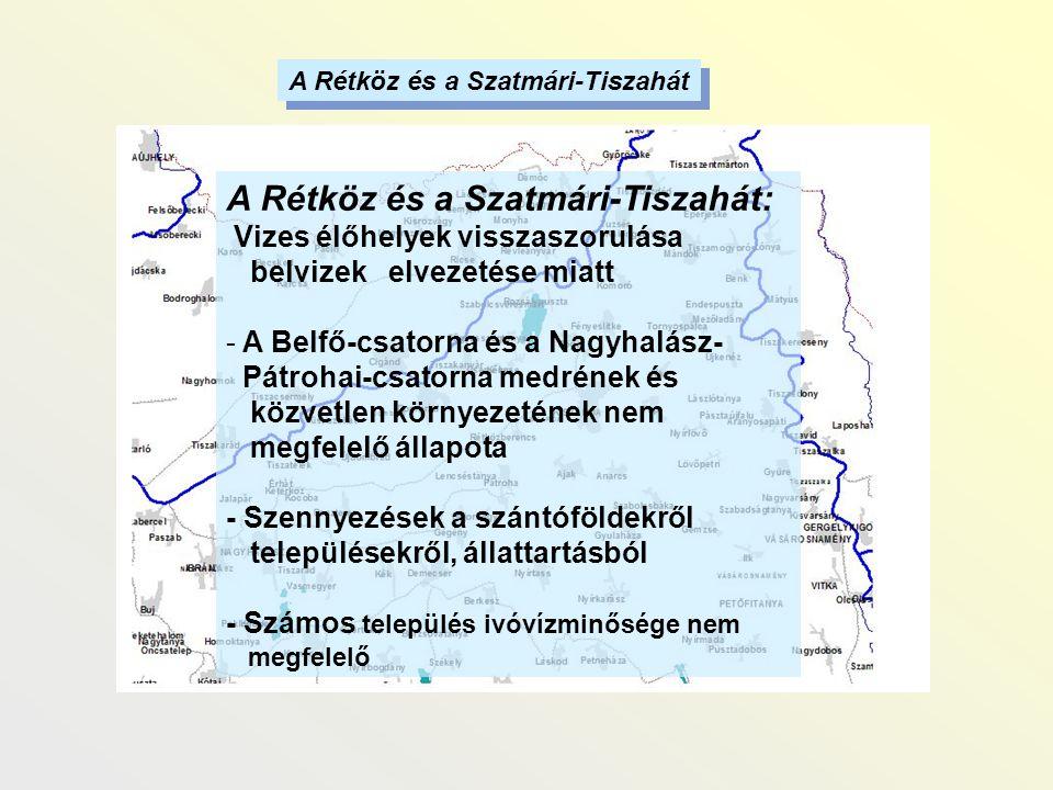 A Rétköz és a Szatmári-Tiszahát: Vizes élőhelyek visszaszorulása belvizek elvezetése miatt - A Belfő-csatorna és a Nagyhalász- Pátrohai-csatorna medré