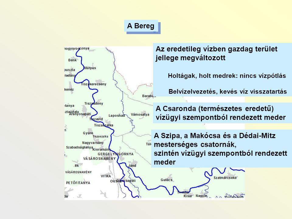 A Bereg A Csaronda (természetes eredetű) vízügyi szempontból rendezett meder Az eredetileg vízben gazdag terület jellege megváltozott Holtágak, holt m