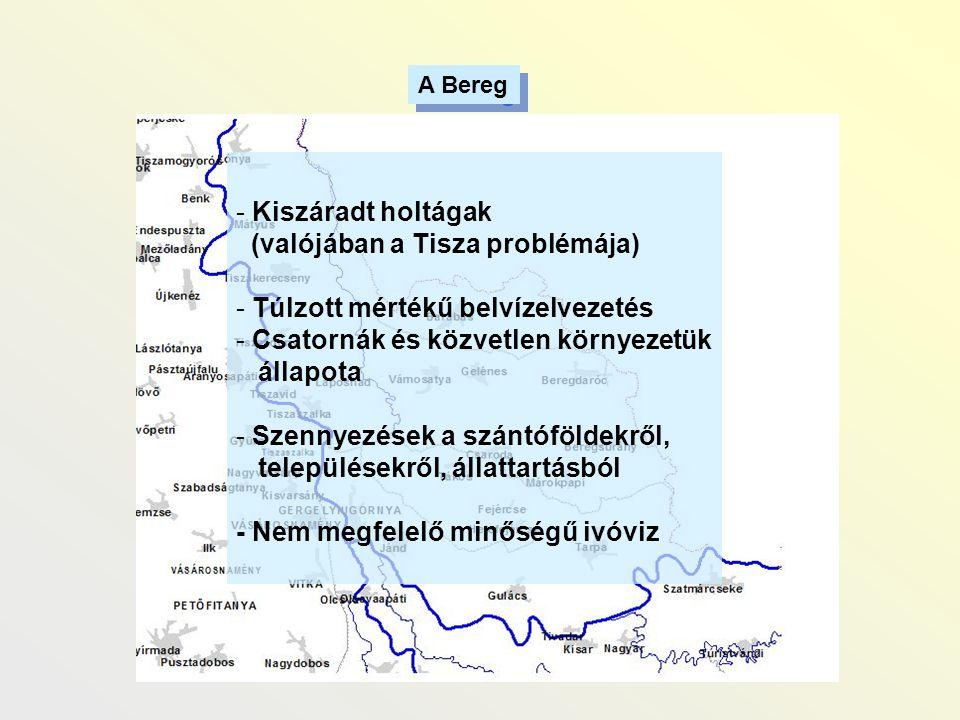 - Kiszáradt holtágak (valójában a Tisza problémája) - Túlzott mértékű belvízelvezetés - Csatornák és közvetlen környezetük állapota - Szennyezések a s