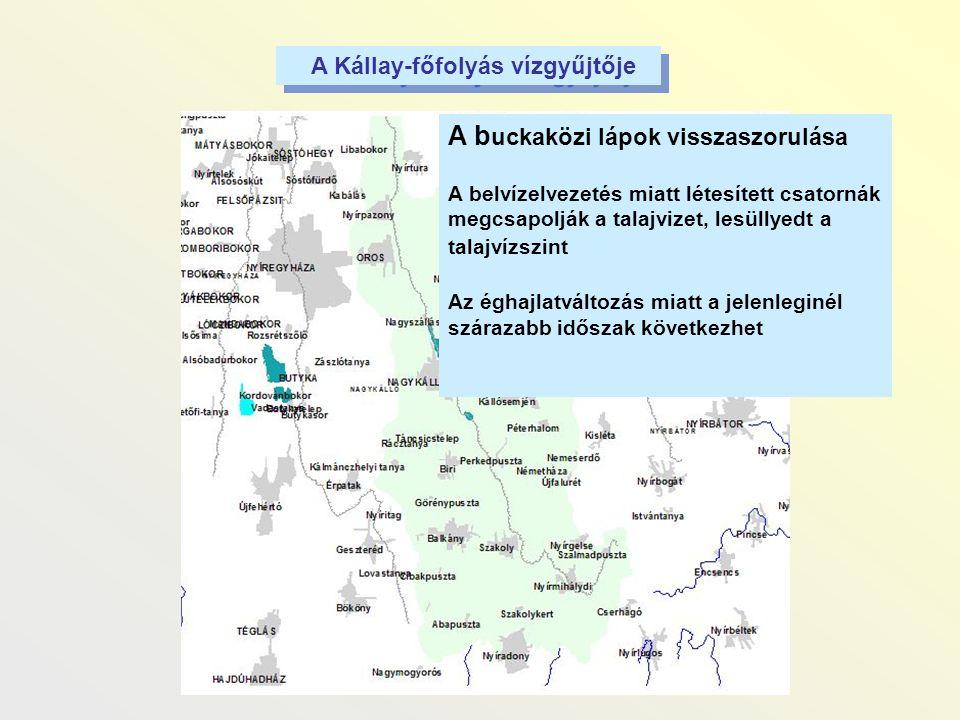 A Kállay-főfolyás vízgyűjtője A b uckaközi lápok visszaszorulása A belvízelvezetés miatt létesített csatornák megcsapolják a talajvizet, lesüllyedt a